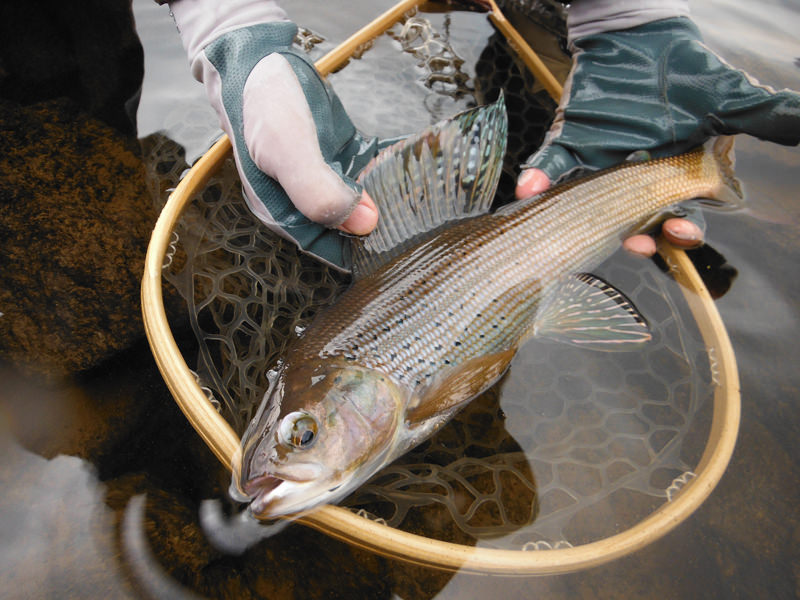 the quiet fly fisher southern utah fly fishing guide service and