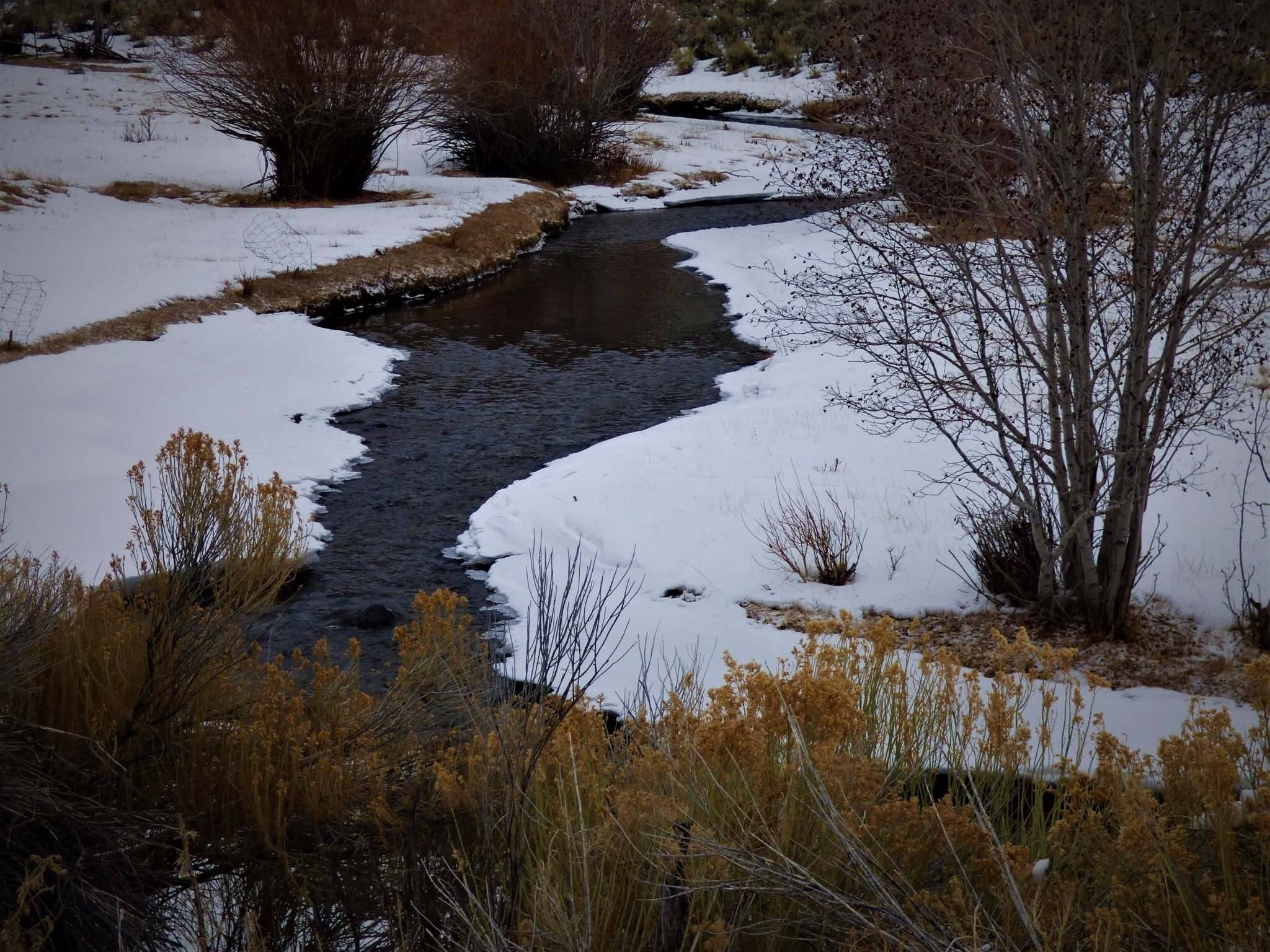The quiet fly fisher southern utah fly fishing guide for Utah ice fishing report